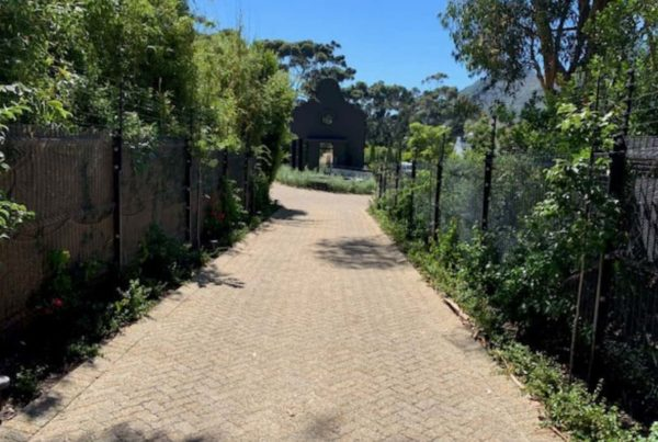 brick road straight gate fence bushes
