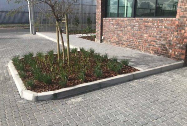 square plants brick paving gate entrance